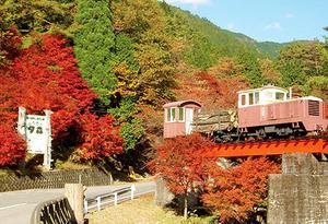 yumori4.jpg