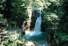 yumorikouen.png